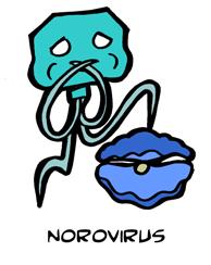 Noro-Virus
